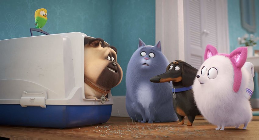 Lake Bell, Bobby Moynihan, Jenny Slate and Hannibal Buress star in 'The Secret Life of Pets 2.'