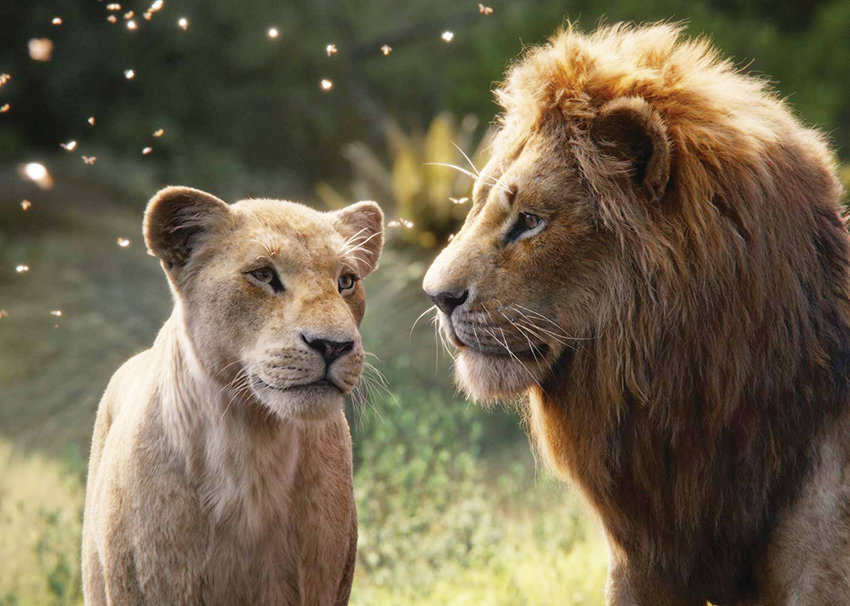 Beyoncé and Donald Glover star as the voices of adult Nala (left) and adult Simba in Disney's live-action remake of The Lion King.