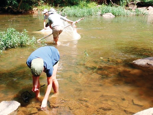 Volunteers at the first 'Creek Week' collected a a dozen bags of trash during the clean-up of a portion of the upper Rocky River.