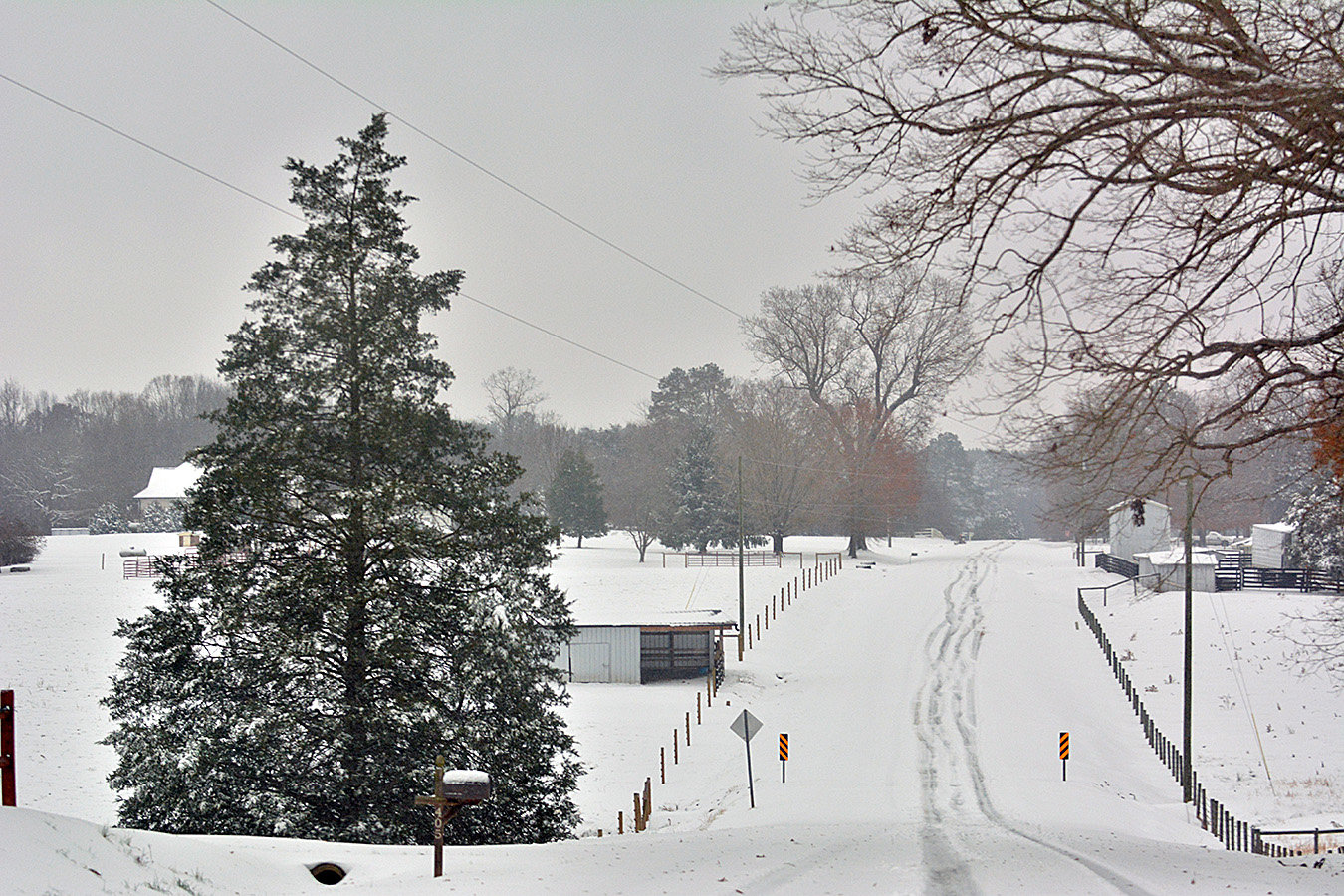 The major highways were noisy as motorists made their way down the road, and into the ditches. But Chatham rural roads were peaceful with very little traffic.