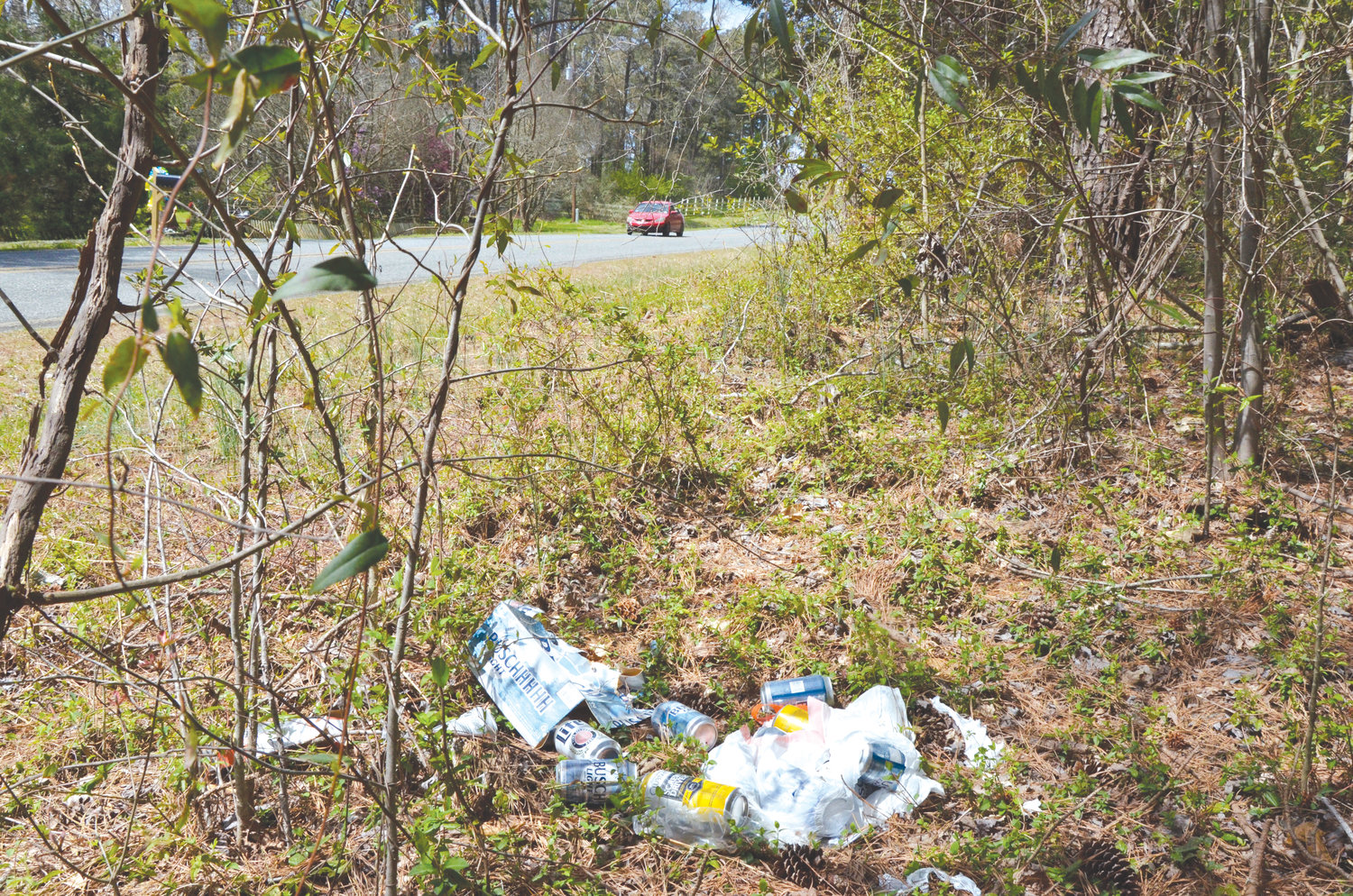A mound of beer cans and other trash decorate the side of Alston Bridge Road in Siler City on Monday. The town government will co-host a 'Spring Litter Sweep' this month around the CAM megasite.