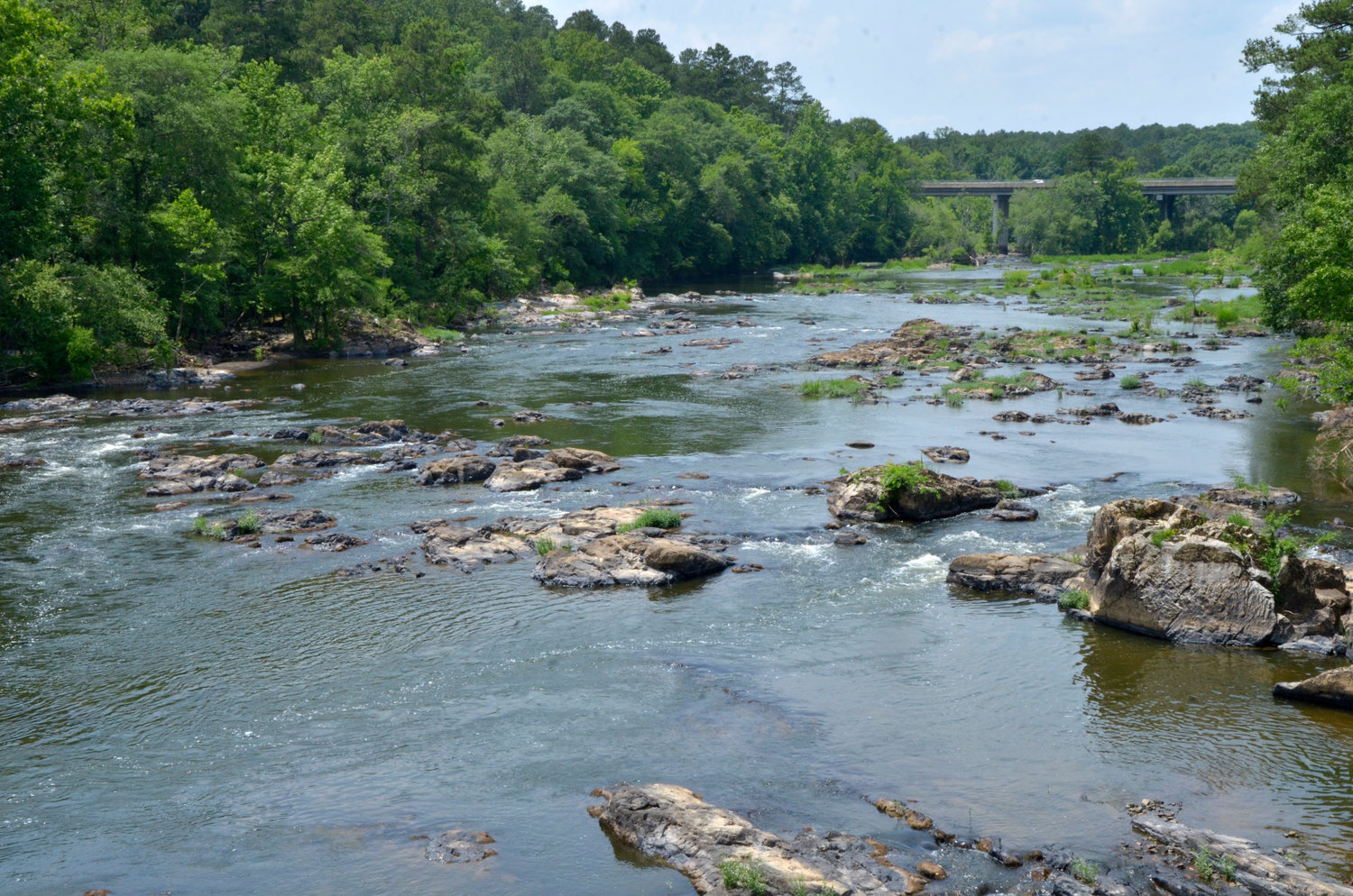 The Haw River, which flows through Pittsboro and supplies the town with its drinking water, is 'one of the most impacted' waterways in terms of unregulated chemicals in the Cape Fear Basin, according to according to Detlef Knappe, S. James Ellen Distinguished Professor of Civil, Construction and Environmental Engineering at N.C. State.