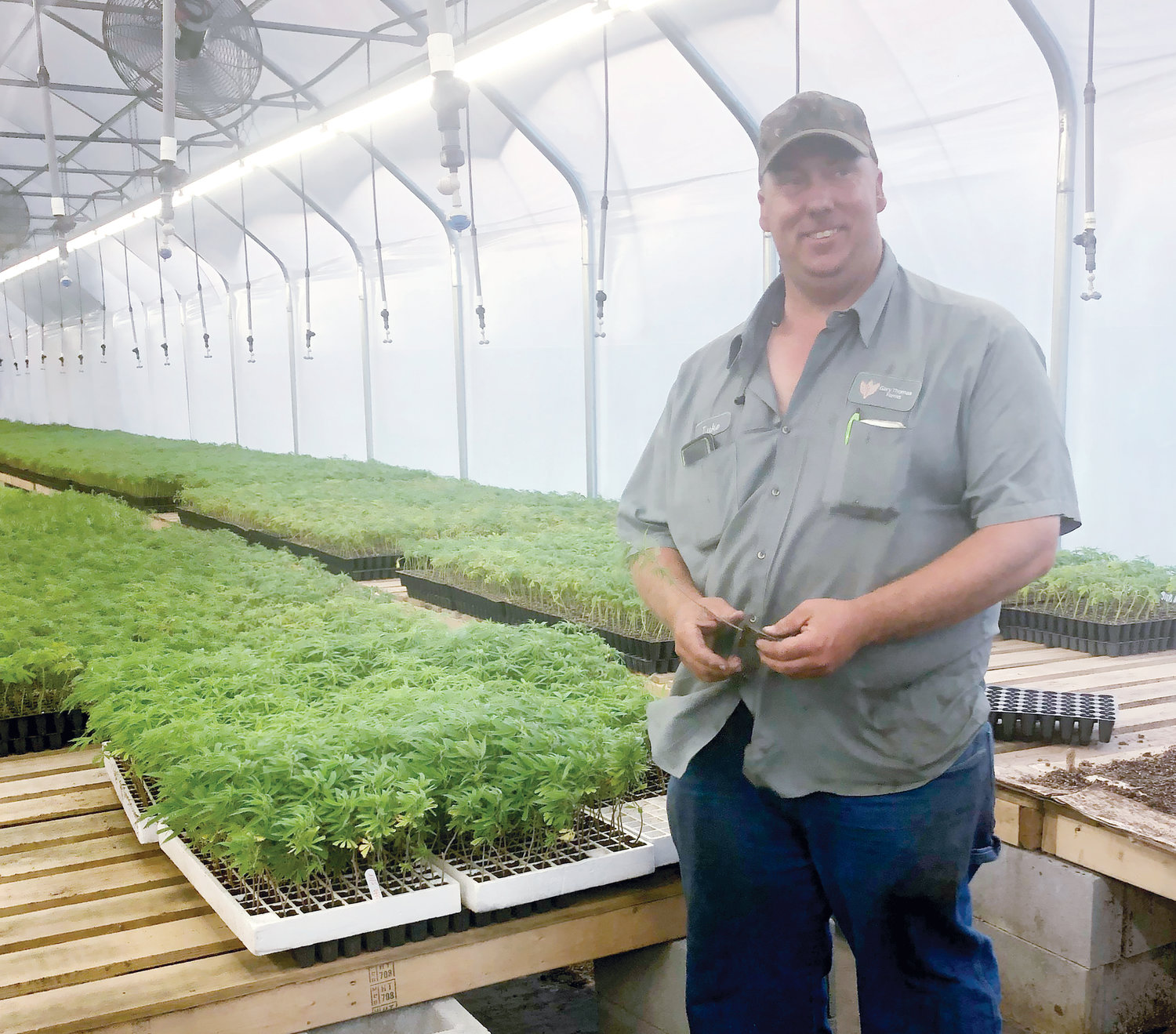 Luke Thomas of Gary Thomas Farms holds a clone in their cloning greenhouse. After purchasing the initial 1,000 clones, they have been able to clone their own and now sell clones to other hemp farmers.