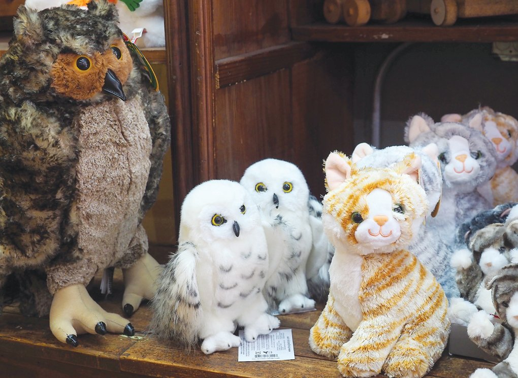 If you're someone who can never have too many stuffed animals, then Pittsboro Toys has a great selection from which to choose.