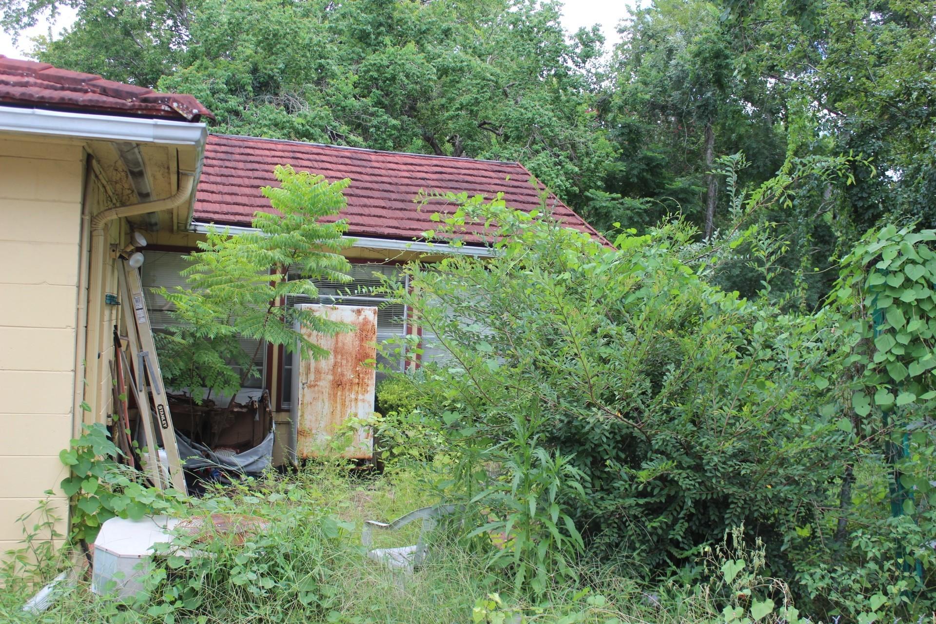 repeat code offender u0027s backyard a health hazard clay today