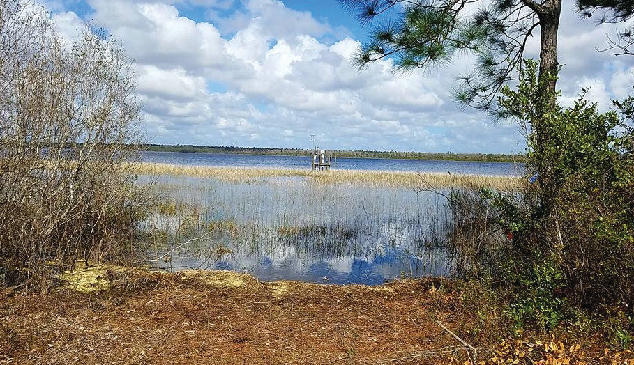 Here is one of the four lakes along the Florida National Scenic Trail, which goes through Camp Blanding and Mike Roess Gold Head State Park.