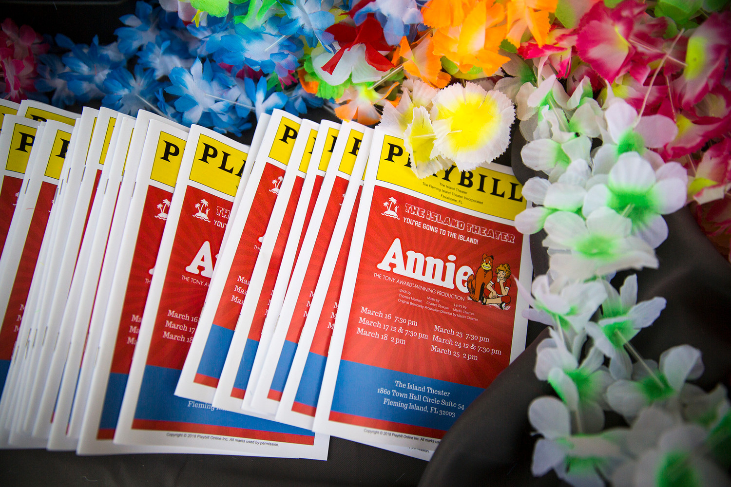 Playbills for Annie sit at the ticket booth Friday night before the first performance of the first play at the newly-built Island Theater in Fleming Island