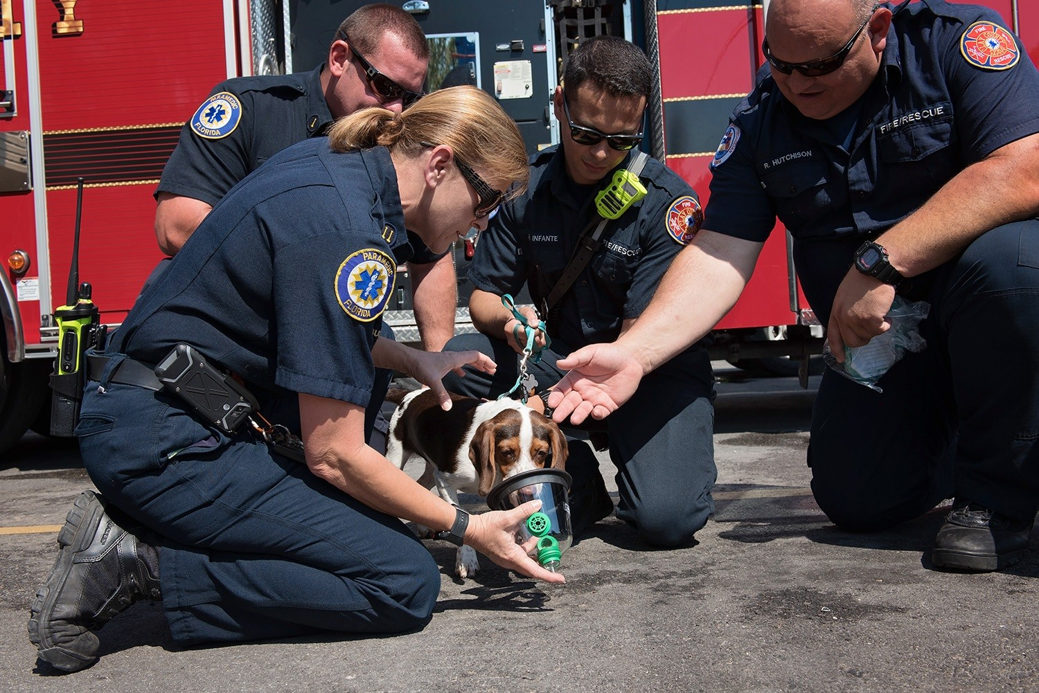 Clay County Fire Capt. Bernita Bush, left, gives water to a beagle on May 11 at the Peoria Road fire station near Orange Park. Clay Humane donated pet oxygen masks to the fire department last week.