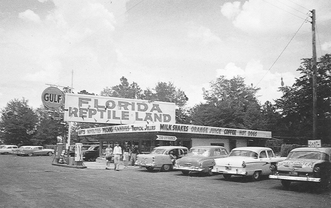 For nearly three decades, Florida Reptile Land was the introduction to the state for tourists traveling south into the state on US Highway 301.