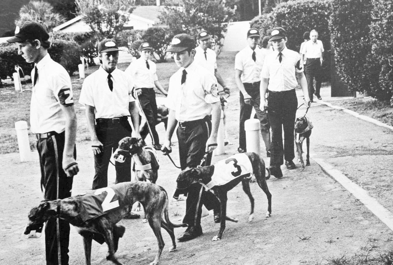 In the 1930s, greyhounds were escorted to the starting gates by nattily uniformed attendants at the Clay County Kennel Club.