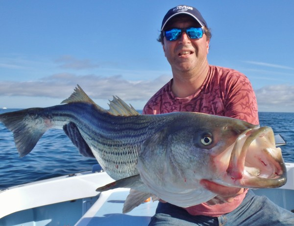 A strong Magnuson-Stevens Act allowed striped bass to grow to sustainable levels, like this one caught September 20.