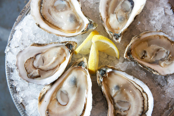 The Sea to Table Tasting is March 30, 2017 at Mount Hope Farm.