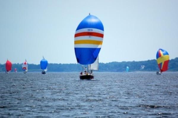 The fleet heads up the Sakonnet River toward the finish line under spinnaker. (Phyllis Ibbotson photo)