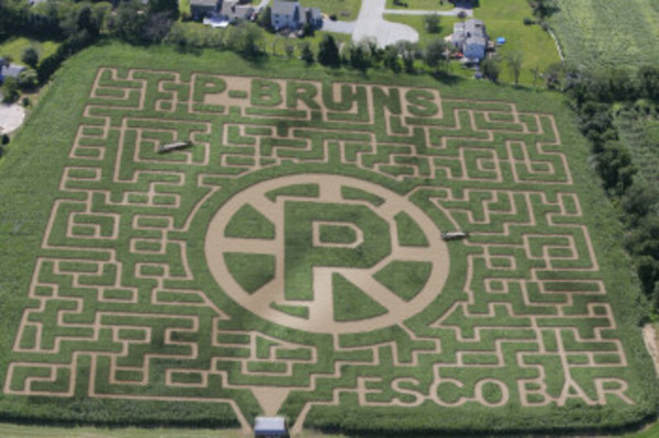 "The 2012 ""Maize Maze"" at Escobar Farm in Portsmouth."