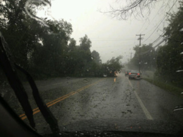East Bay Newspapers employee Lisa Carro took this photo from inside her car on Market Street.