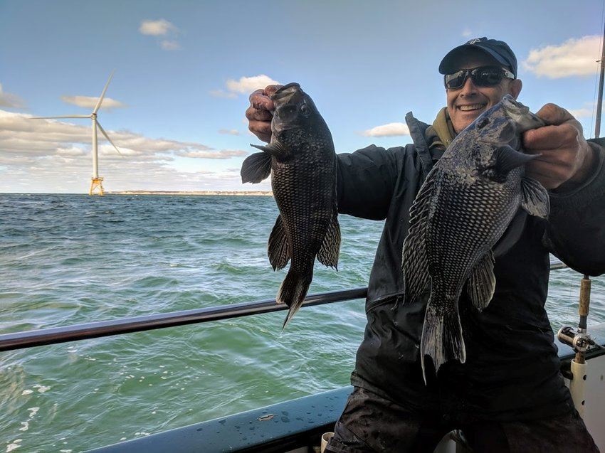 Block Island Wind Farm black sea bass and fluke fishing has been good. Capt. Paul Eidman of New Jersey checks out the bite as Ocean Wind, a wind farm off Atlantic City, will be built in his area.