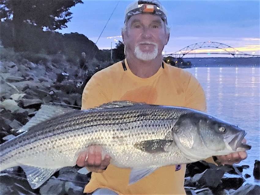 Blake Webster tautog – Photo B  Kenny Nevens of Bourne caught this 41 inch striped bass on a green Fish Lab Mac Attack at first light on a Cape Cod Canal west rising tide. Photo courtesy of East End Eddie Doherty.