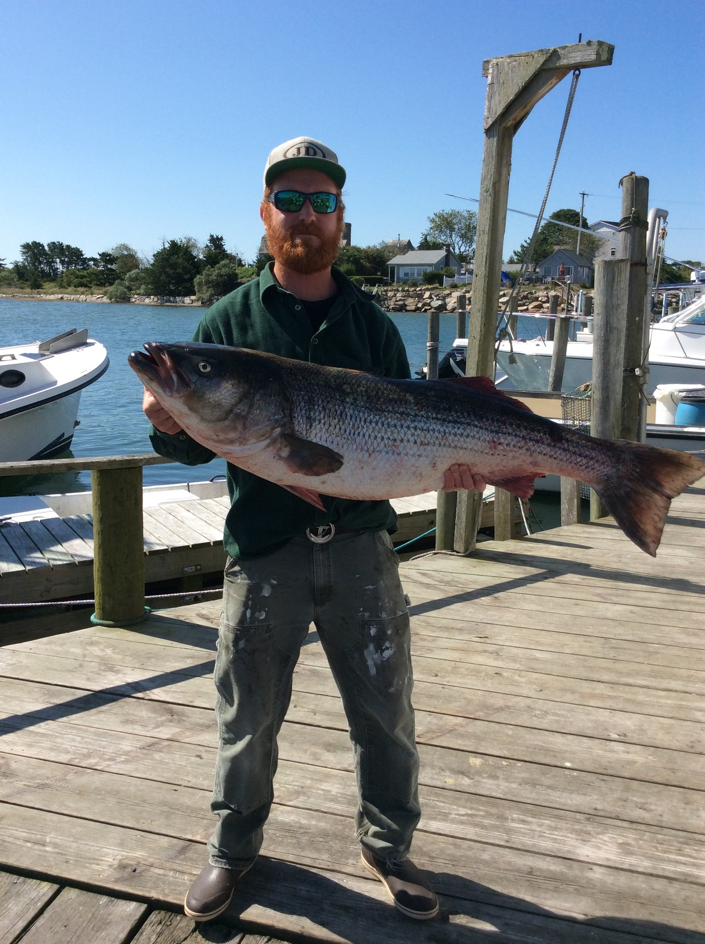 Kyle Dawson of Wakefield took first place in the 2nd Annual Snug Harbor Billy Carr Midnight Madness Striper Tournament last week with this 49.88 pound striped bass.