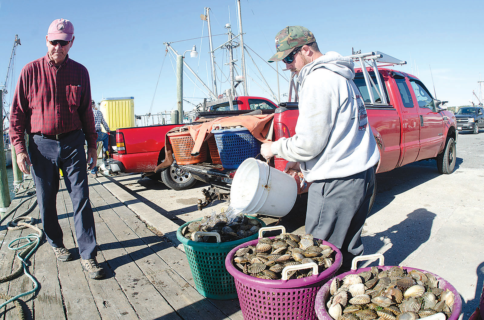While he waits for the truck from Southeast Shellfish to arrive, Alex Brewster pours seawater onto his scallop catch. At left is Everett Mills.