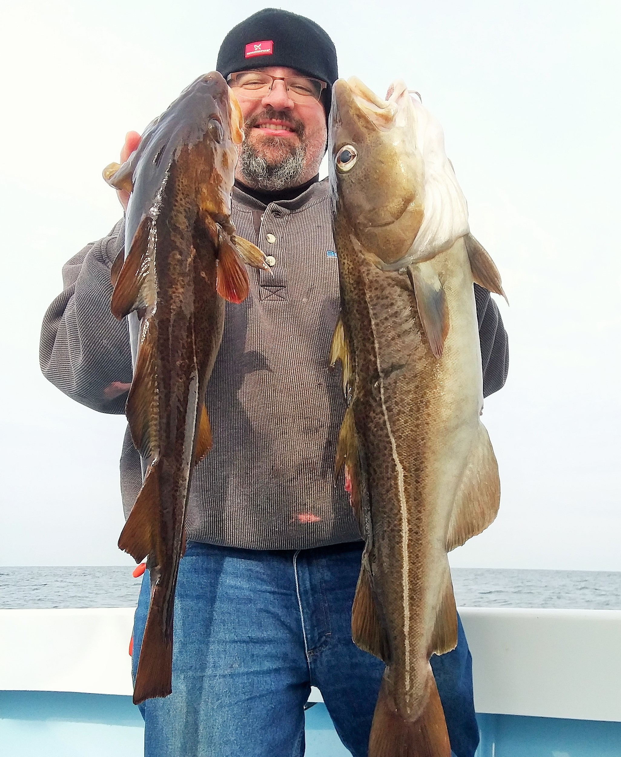Jim Stevens of Warwick with two cod fish caught with hi/lo cod fishing rigs using fresh sea clams as bait.
