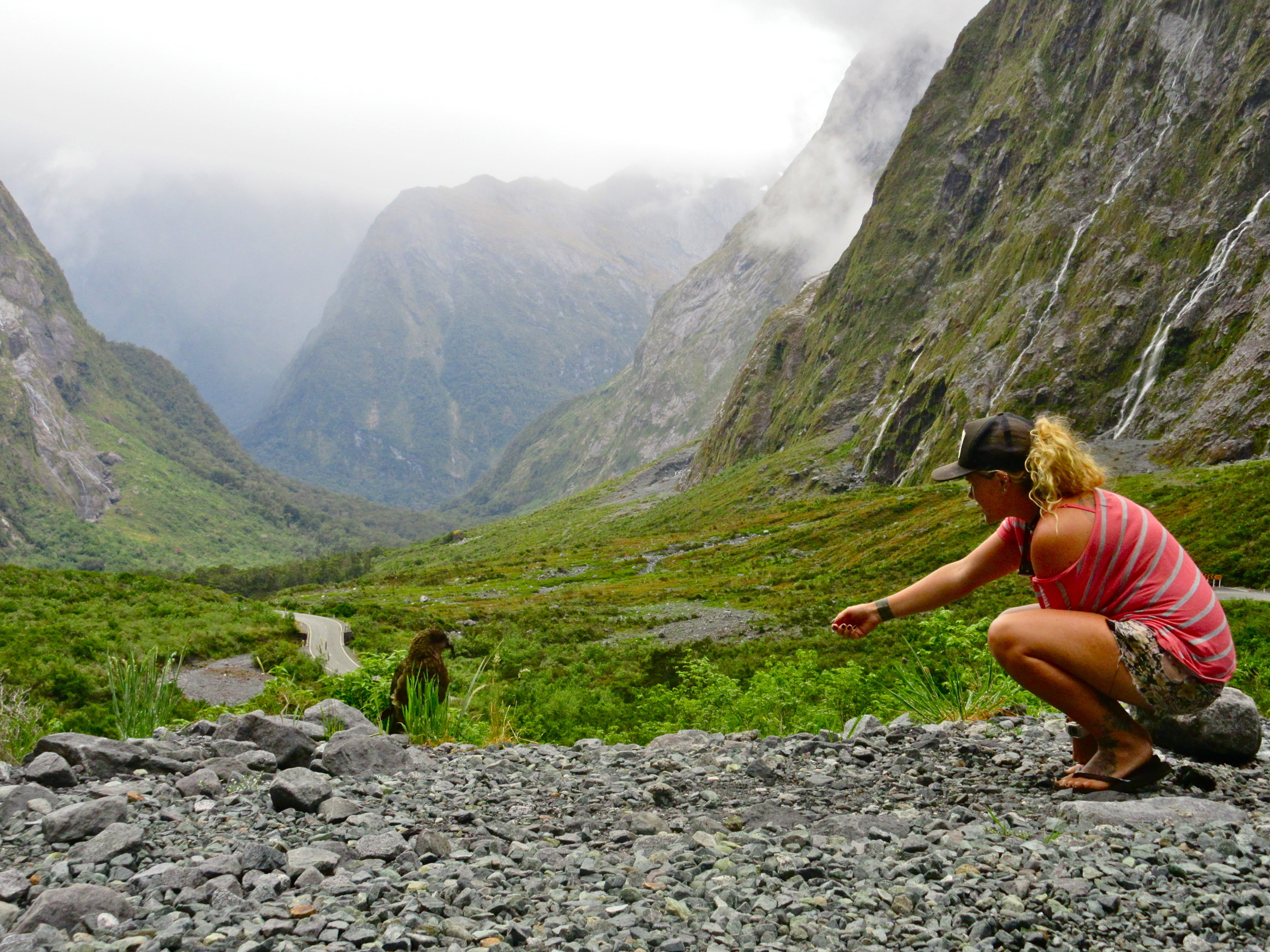 Breezy Grenier tries to coax a feathered friend at Milford Sound, a fiord on New Zealand's South Island, during a 2014 trip.