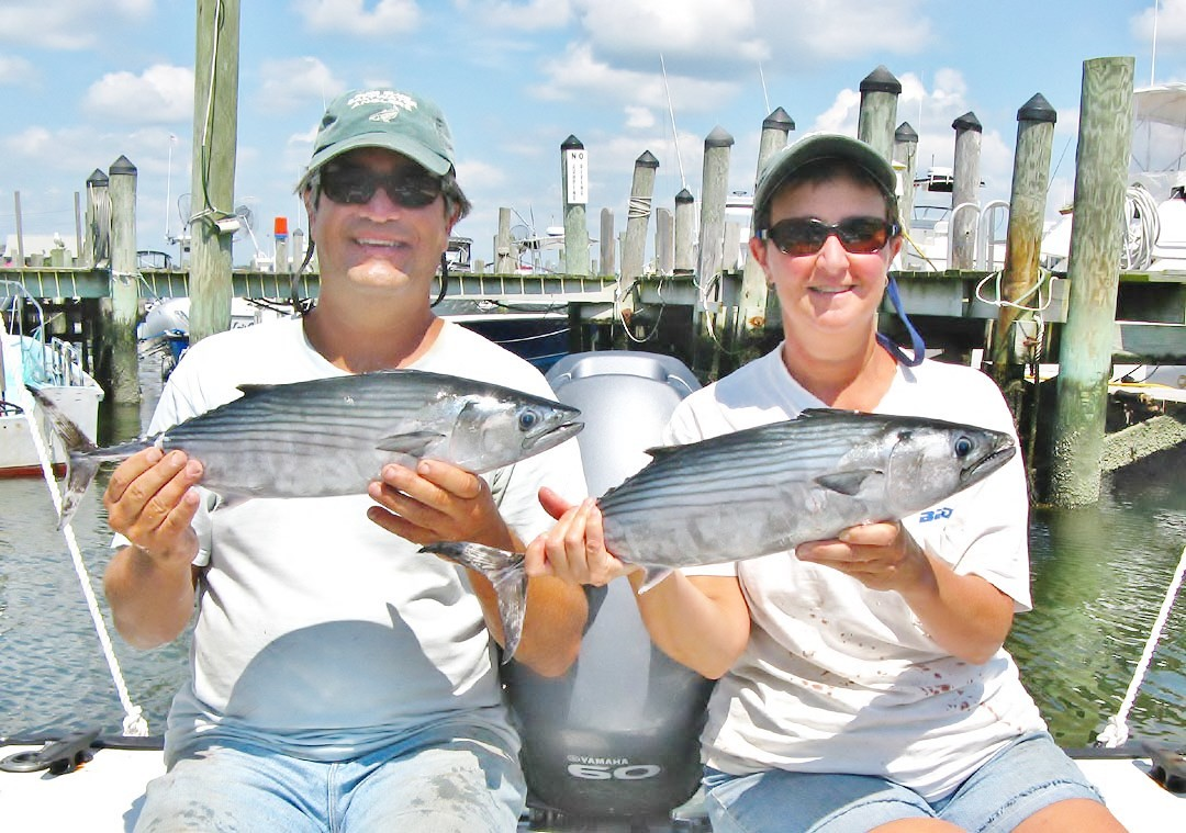 Roger and Susan Lema are bonito and false albacore fishing experts. They target them from Westerly to the Sakonnet River. Last week the bonito bite was excellent.