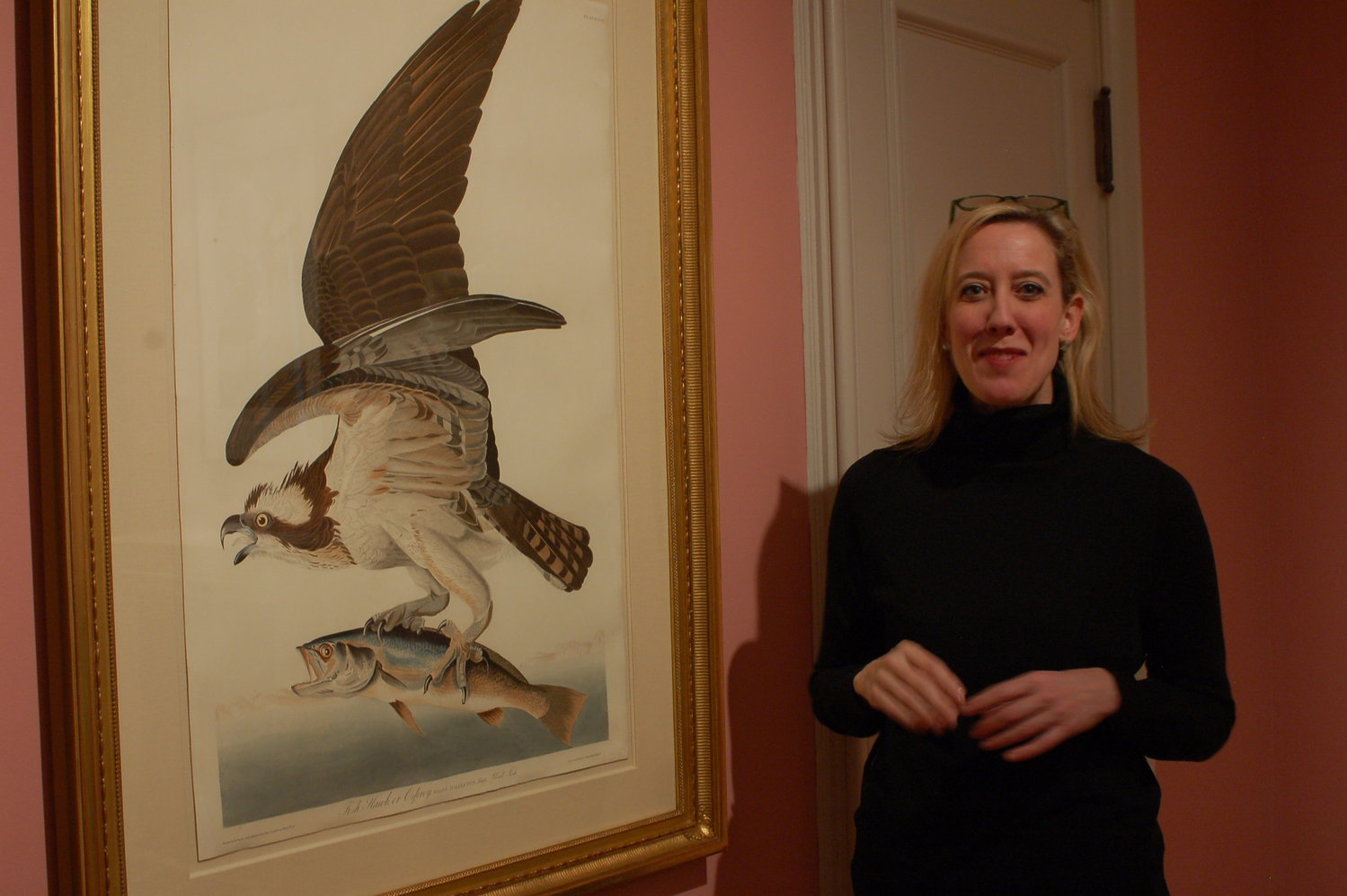 "'John James Audubon: Obsession Untamed', on display at Rosecliff through Nov. 3, is curated by Ashley Householder, Curator of Exhibitions for The Preservation Society of Newport County. The exhibition features 29 hand colored aquatints from Audubon's ""Birds of America""."