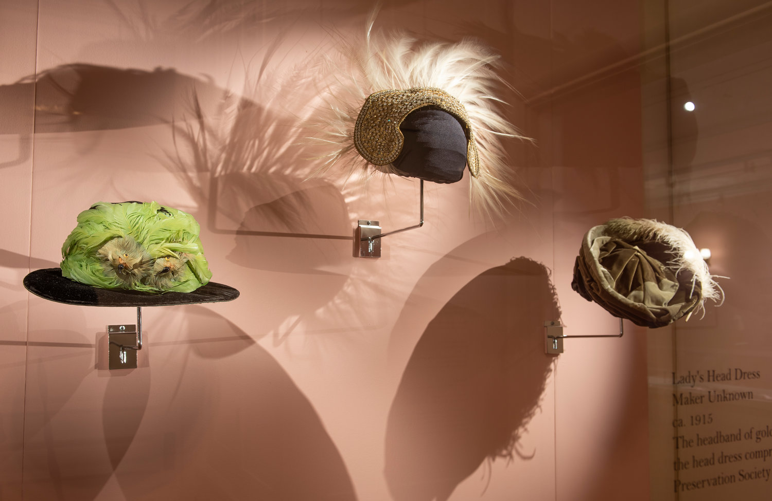 'John James Audubon: Obsession Untamed' includes several ladies hats illustrating the early-20th-century craze for feathers that, along with Audubon's images, lead to initial conservation efforts.