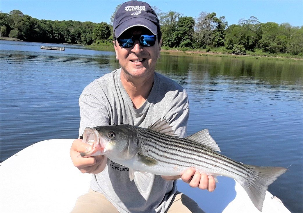 "Spring bass a hoot: Steve Brustein with a 25"" spring striped bass caught on an Al Gag's soft plaster white lure in five feet of water in East Greenwich Cove."