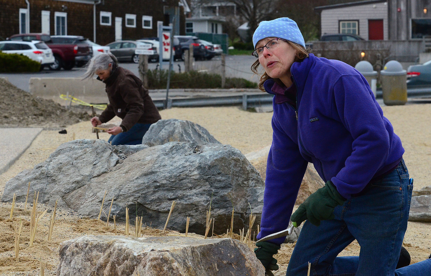 Amidst the boulder installation, Patricia Hilton (left) and Wenley Ferguson plant beach grass starters in the sand.