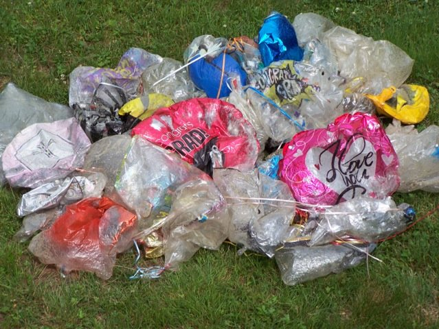 One walker collected this balloon mess from a mile-long stretch of Horseneck Beach in 2013.