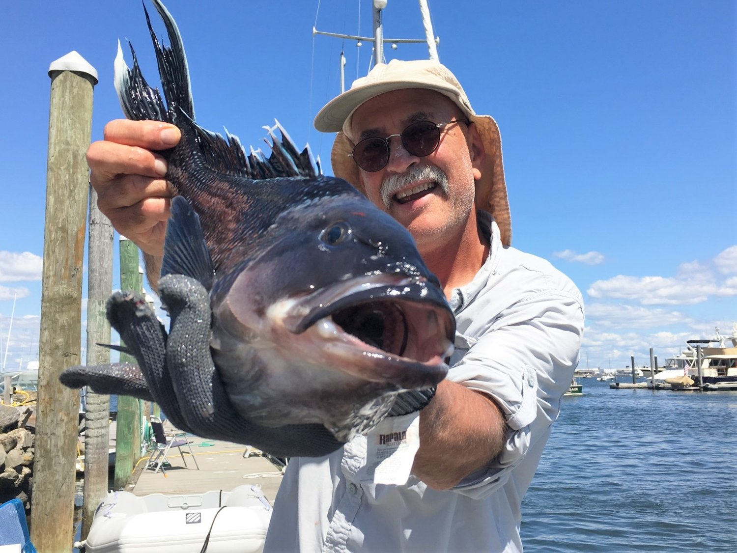 Black sea bass running strong and large. Like this one caught by Kevin Fetzer, East Greenwich, at the mouth of the Sakonnet River.