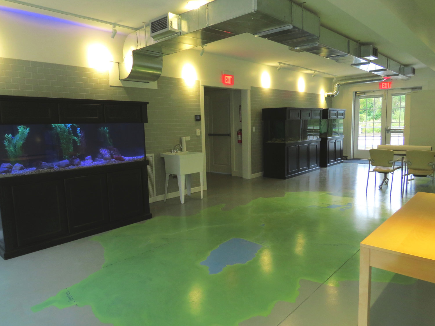 First floor aquariums feature local fish and plants. The floor illustrates the river's watershed.