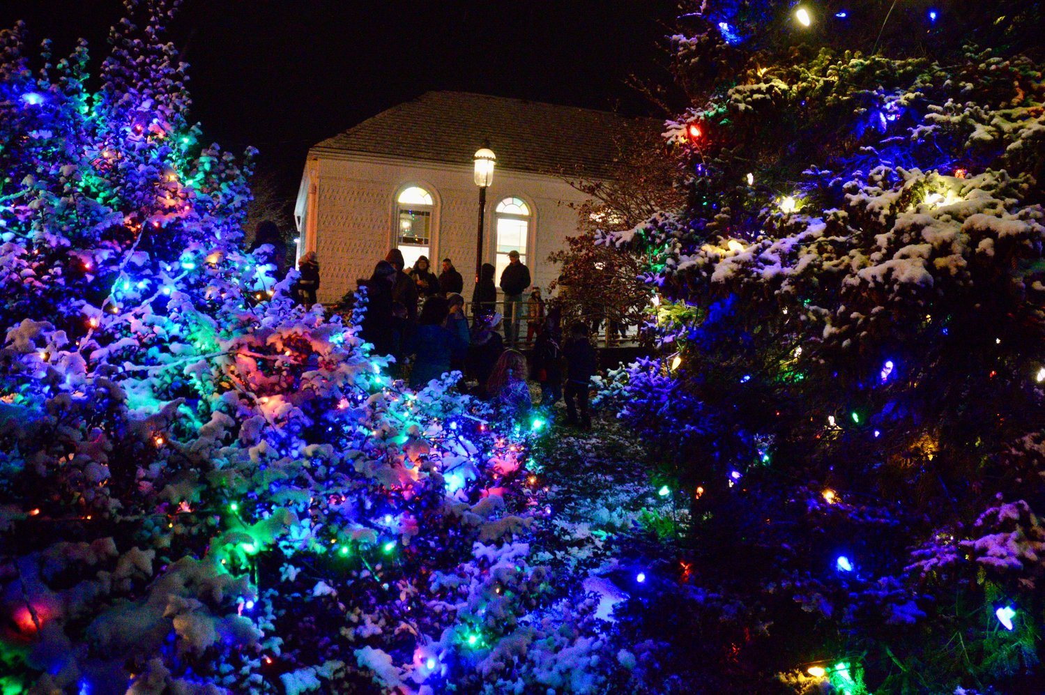 The library's Christmas tree and a large bush are aglow with Christmas lights as families make their way inside the building for more revelry.