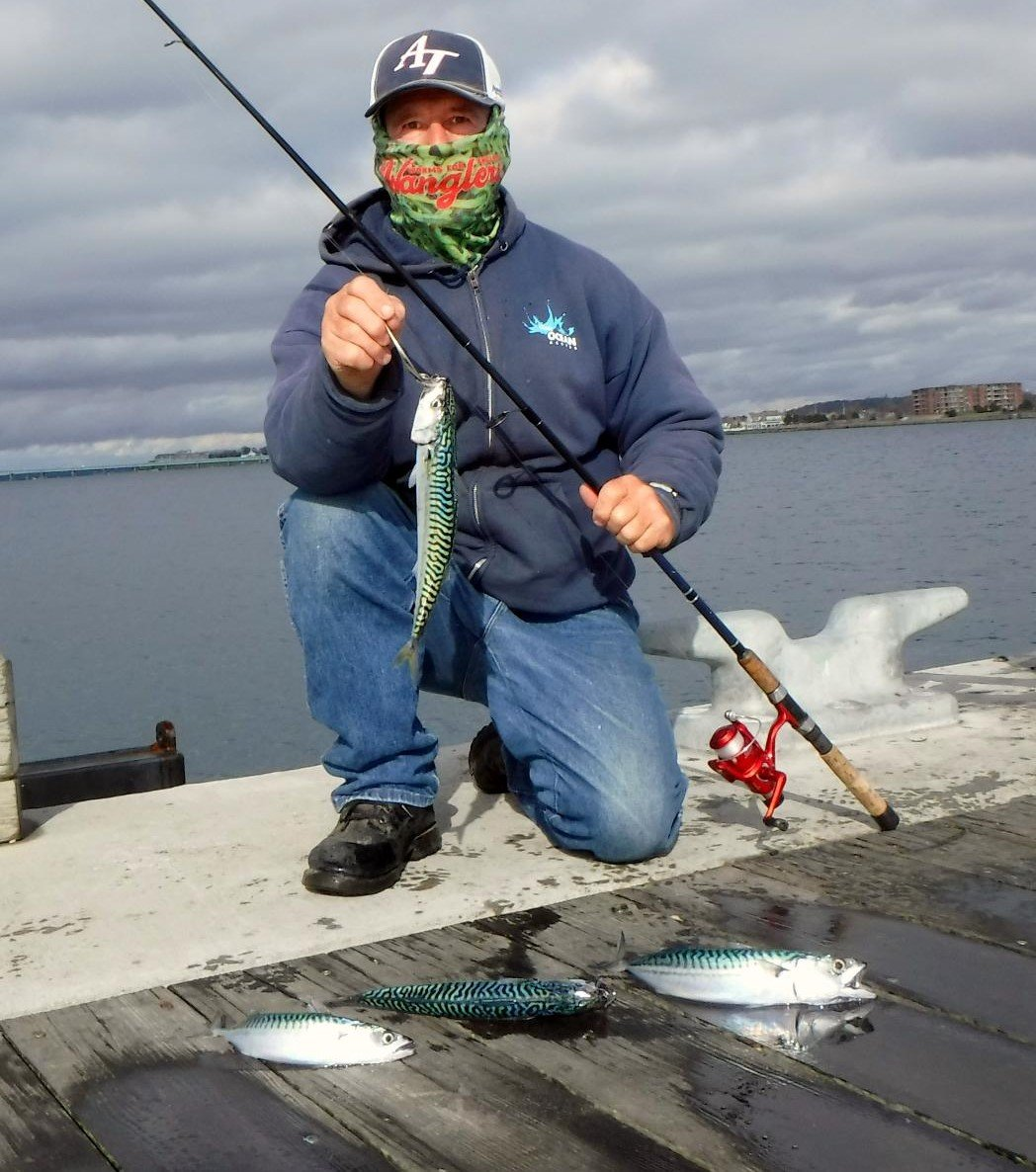 "Good mackerel bite: Aquidneck Island angler John Migliori said, ""The Mackerel are back in town."" He caught several large and small mackerel last week from the Newport shore."