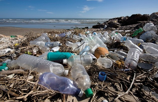 Plastic refuse is washing up on beaches around the world.