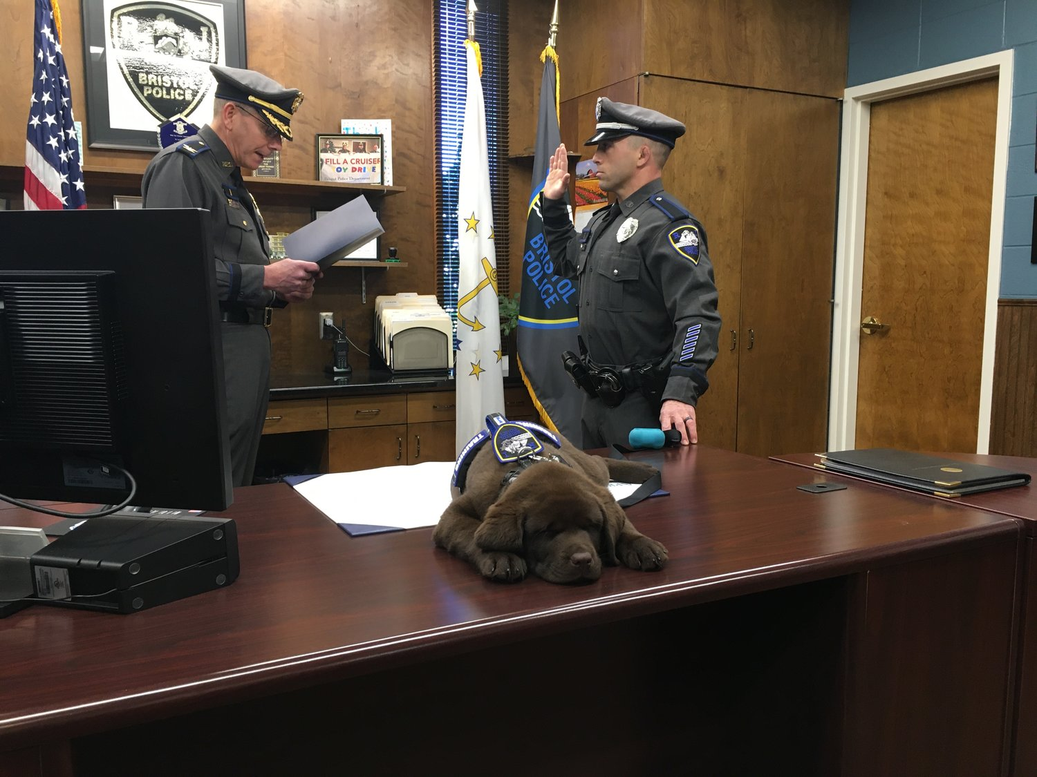Bristol Chief of Police Kevin Lynch swears in Brody (yes, he's sleeping on the chief's desk), assisted by his new partner, School Resource Officer Keith Medeiros.