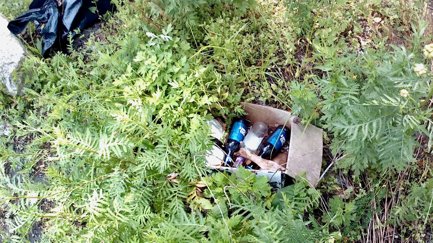 "David Souza snapped this picture of some of the trash left behind by visitors to Gull Cove off Route 24 North, where he says some people stay all day to drink and party. ""It was designed for fishing, not swimming,"" he said."
