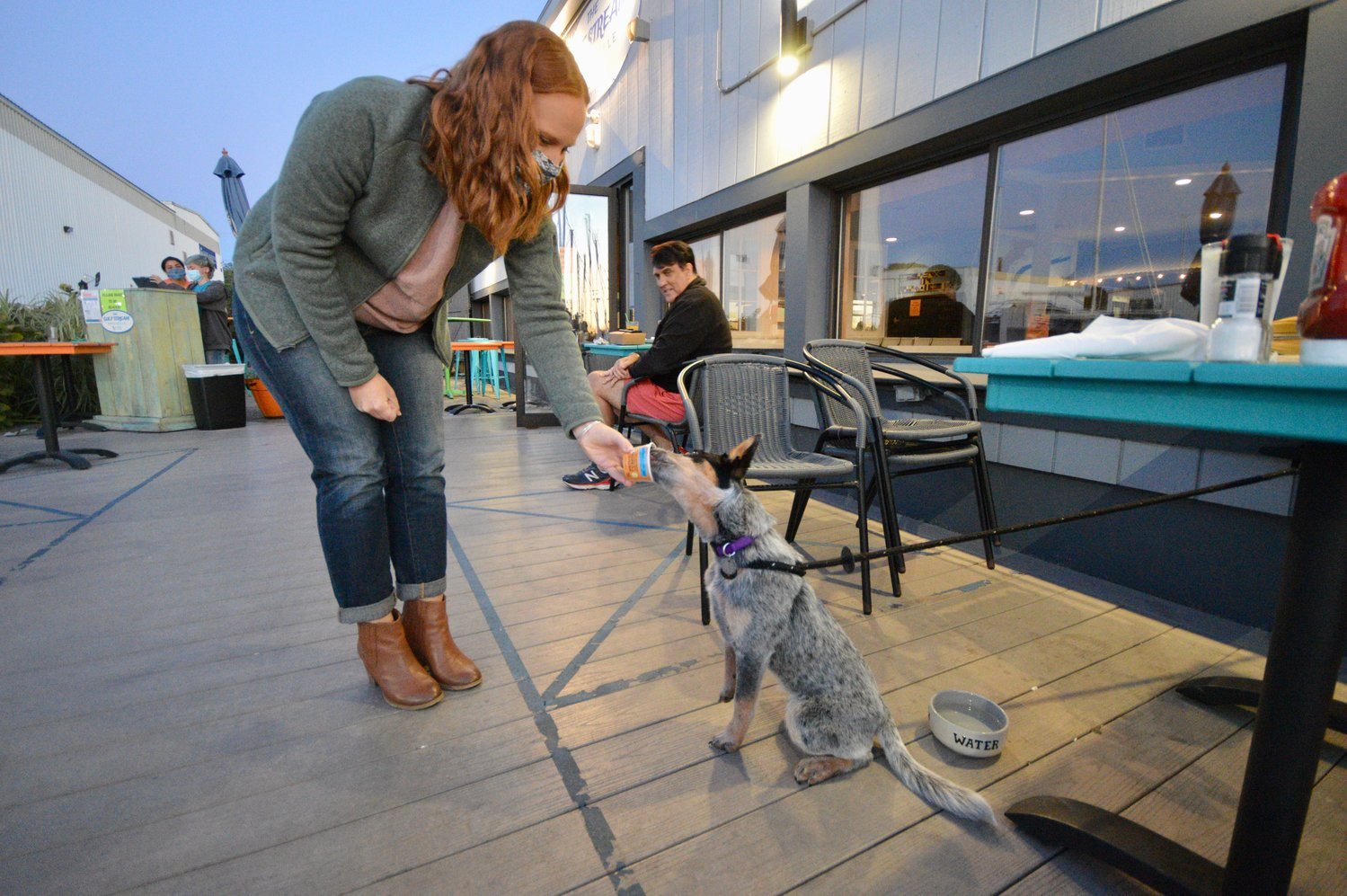 "Nicole Frisk treats Indie, her 5-month-old Australian cattle dog, to an ice cream ""pup cup"" at the Gulf Stream Bar & Grille in Portsmouth Friday night."