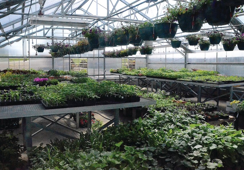 Scales Mound's new greenhouse is full as the ag department prepares for its annual plant sale.