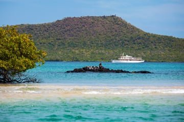 Find Exclusive Adventure on a Galapagos Cruise