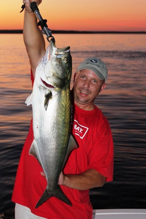PERFECT SUNSET: Angler Tom Peters of Warwick caught this 15.6 pound bluefish on his way back from Block Island this weekend in front of Quonset Point, North Kingstown.  The bluefish was caught on menhaden that was put back into the school he snagged it from (the school is the circular ripple  behind him in the upper right corner of the photo).