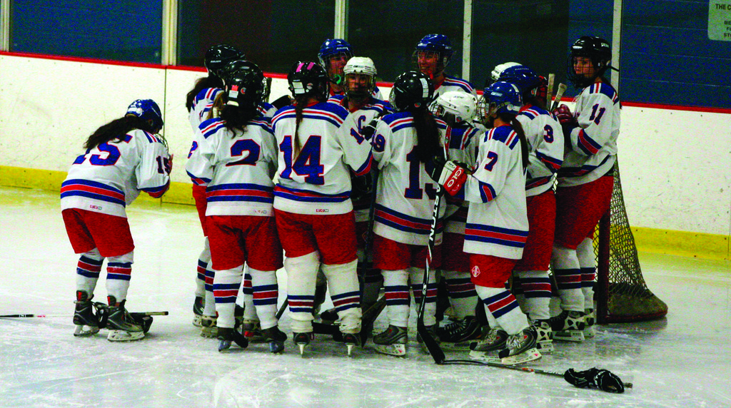 TEAMING UP: The Warwick girls' hockey team is part of an expanding league. Coaches around the state have also formed an association to help steer that growth.