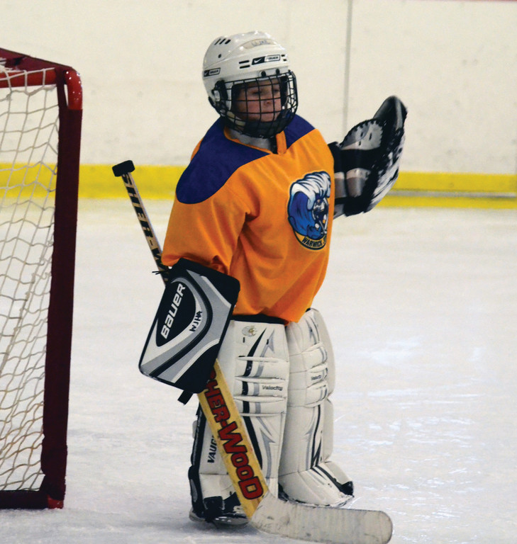 Luke Handy stands in net for the Warwick gold team.