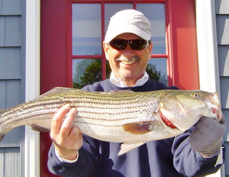 Captain Dave Monti holds the first striped bass of the season caught on No Fluke Charters last week in East Greenwich Cove.  The fish was caught with a Yozuri Crystal Minnow swimming lure.