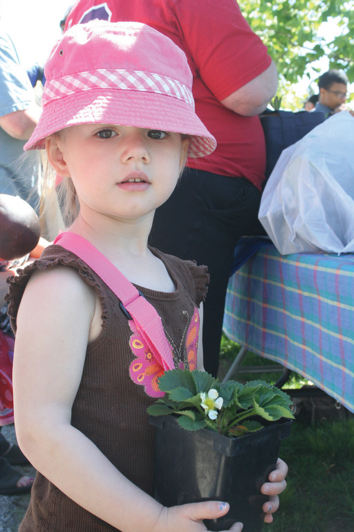 PLANTING A SEED: Three-year-old Lucy holds a strawberry plant she and her family purchased at the market.