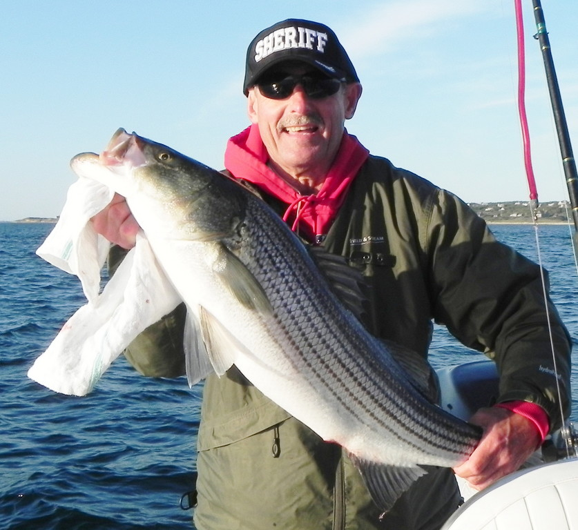 Bob Matteson, first mate on Captain Sheriff's Fishing Charters, with a bass caught with parachute jigs on the Southwest side of Block Island.  Captain Sheriff found fish in the mid 30 inch range this weekend at both the North Rip and the Southwest side of the Island.
