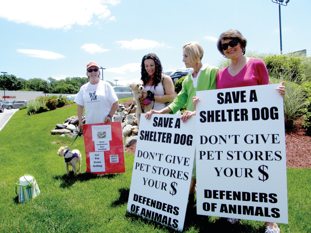 SAVE A SHELTER DOG: Jeanette Monast, Jill DeLuca, Terri Iannotti and Kathy Giardino staked out a spot on Route 2 with signs that urged people to adopt dogs instead of shopping for them. They are joined by Lily and Lola, both rescue dogs.