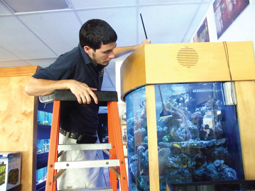KEEPING IT CLEAN: Something Fishy employee Jay Marciano cleans a coral reef tank valued at $30,000.
