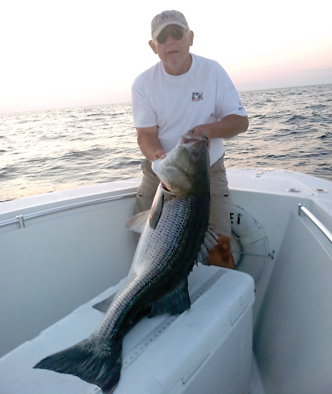 SOME BASS: Alan Gammons Sr. of East Greenwich caught this monster striped bass while fishing Block Island at sunset last week. He was fishing with eels with his son Alan Gammons Jr. (also of East Greenwich) on a friend's boat.